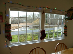 The Christmas decorations I put up on Wednesday.  You can see the icy pond out this window.