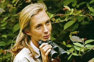 Primatologist Jane Goodall, from Time Magazine