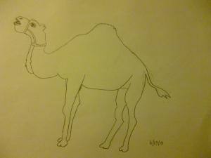Drawing by Eva Langston