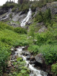 Snow-melt waterfalls at the beginning of the trail.  Beautiful!