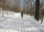 Cross-Country Skiing & Following the Tracks of Writers Before Me